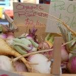 Ten Ways to Cook a Turnip