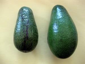 Ripe and Unripe Avocado