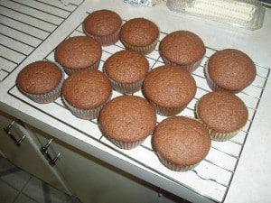 Sourdough Muffins