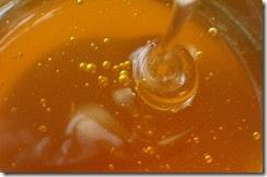 honey-bubbles