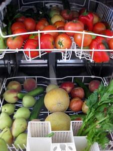 fresh produce loaded in dishwasher