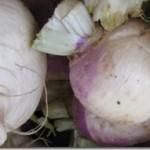 Ten Terrific Turnip Recipes