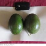 Super Bowl Recipe: Avocado Bean Salad