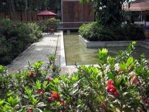 L-shaped pool in botanical garden