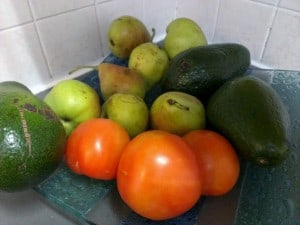 avocado, pears, tomatoes on tray on counter